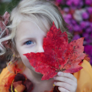 Autumn at St Andrew's Montessori