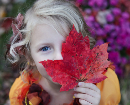 Autumn at St Andrew's Montessori